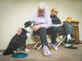 Grandma stroking playful dog — Stock Photo