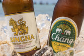 Chang and Singha beer on the beach — Stock Photo