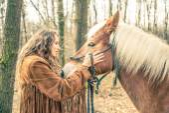 Woman stroking horse — Stock Photo