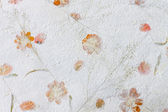 Mulberry paper with dry flower texture background — Foto de Stock