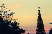 Shiny Christmas Tree,silhouette background in twilight — Foto de Stock