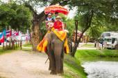 Ayutthaya Thailand -  Tourists on an elephant ride tour of the a — Stock Photo