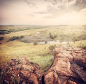 Summer landscape with tree, stone and buitiful sky, instagram ef — Stockfoto