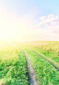 Vintage road through fields with green grass and blue sky with c — Stock Photo