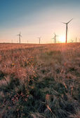 Silhouette of a windmill on a rural field on sunset, natural bac — Stock Photo
