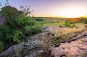 Summer landscape with stone on sunset — Stock Photo
