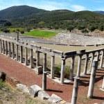 Постер, плакат: Ruins in Ancient city of Messina Greece