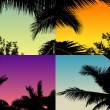 Silhouettes of palm trees against the twilight sky — Stock Vector #58079363