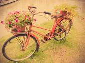 Old red bicycle with flower pottery — Foto Stock