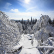 Winter Snowy Landscape View from Mountains Top with Snow, Sun and Blue Sky -  Vertical Photo — Stock Photo #63993053