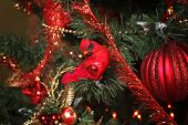 Christmas background with fir-tree toys new year — Stock Photo