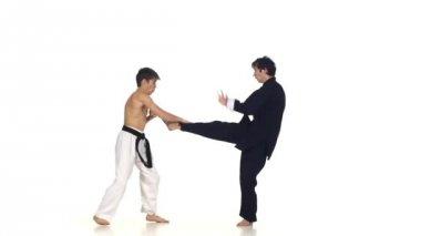 Sparring taekwondo on a white background — Stock Video