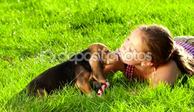 Beagle puppy dog eating from hand in womans arms. Slow motion — Stock Video