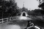 Black and White Pagoda — 图库照片
