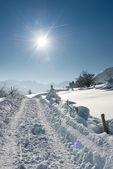Ogromna ciężarówka ślady w śniegu w Austrii zimowy krajobraz — Zdjęcie stockowe