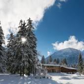 Ogromnych drzew i drewna kabiny zimą w górach austriackich — Zdjęcie stockowe