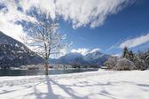 Sun shining through single tree in idyllic winter snow landscape in austria — Stock Photo