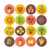 Set of flat design icons for fruits and vegetables. — Stock Vector