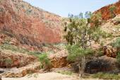 Alice Springs in Northern Territory, Australia — Stock Photo
