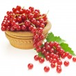 Red currants and green leaves — Stock Photo #51802937