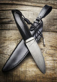 Hunting knife and scabbard — Stock Photo