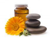 Calendula flower and oil — Stock Photo