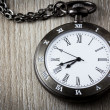 Pocket watch — Stock Photo #52444477