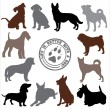 Dogs set — Stock Vector #52960779