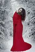 Mysterious fantasy woman in red dress in forest at snow. Book cover — Stock Photo