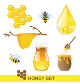 Honey set on white background — Stock Vector