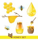 Honey set on white background — Wektor stockowy