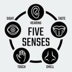 Five senses icons set — Stock Vector #58991853