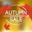 Autumn sale background — Stock Vector #57574201