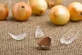 Spicchio d'aglio — Foto Stock