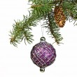 Spruce branch with cones and Christmas toys — Stock Photo #60463653
