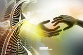 DNA chain and hands — Stock Photo