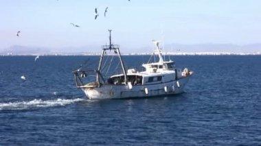 Trawler fishing boat working — Stock Video