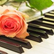 Piano and rose — Stock Photo #67748721