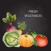 Set of watercolor vegetables. — Stock Vector