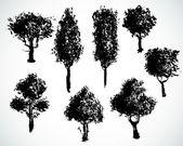Hand drawn trees — Stock Vector