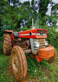 Vintage Tractor and Forest — Stock Photo