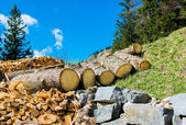 Wood and Stone as Natural Resources — Stock Photo