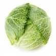 Green cabbage isolated on the white background — Stock Photo #51821835
