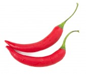 Red chilly peppers isolated on the white background — Foto de Stock