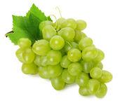 Uvas verdes, isoladas no fundo branco — Foto Stock