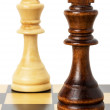 Chess figures isolated on the white background — Stock Photo #54234533