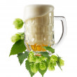 Mug fresh beer with Green hops isolated on the white background — Stock Photo #57315255