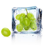 Grape in ice isolated on the white background — Stock Photo