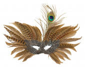 Carnival mask with peacock feathers isolated on the white backgr — Stock Photo