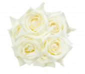 White roses isolated on the white background — Stock Photo